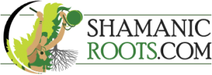 Shamanic Roots: Ceremony and Healing workshops
