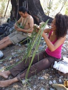 an image of a man and a woman sitting under the tree holding a palm leaves